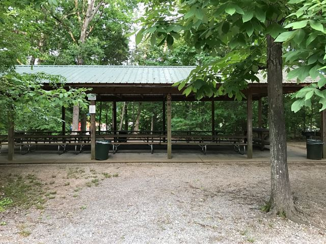 Picnic shelter 6 in wooded area